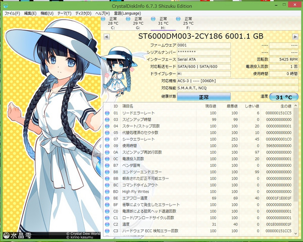 Hdd_st6000
