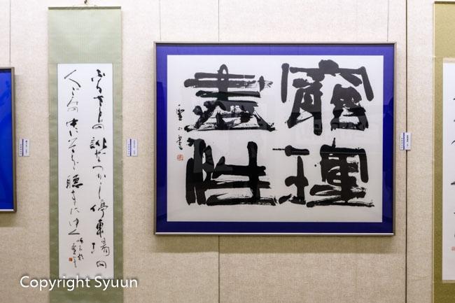 Hoshino1779