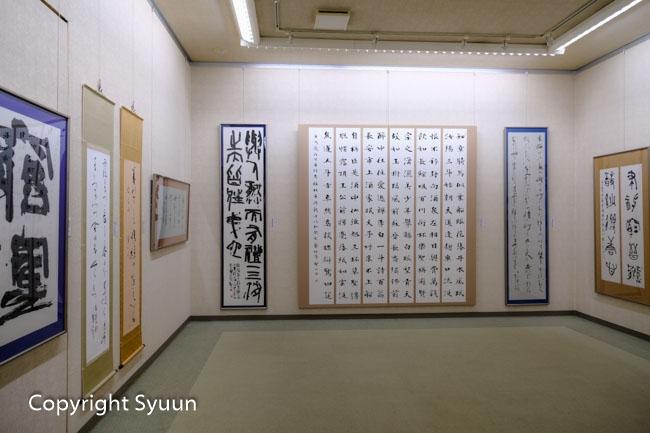 Hoshino1785