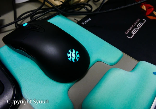 Mouse1020581