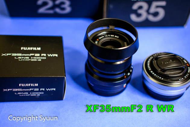 Xf2381