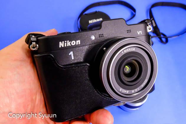 Nikon1172