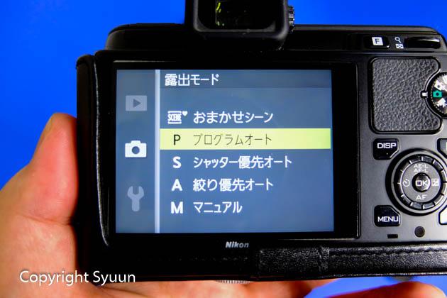 Nikon1175