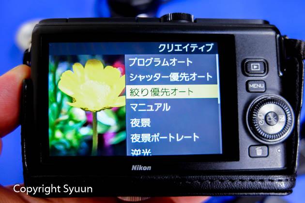 Nikon1176